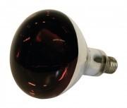 Infralámpa Izzó Piros 250 W